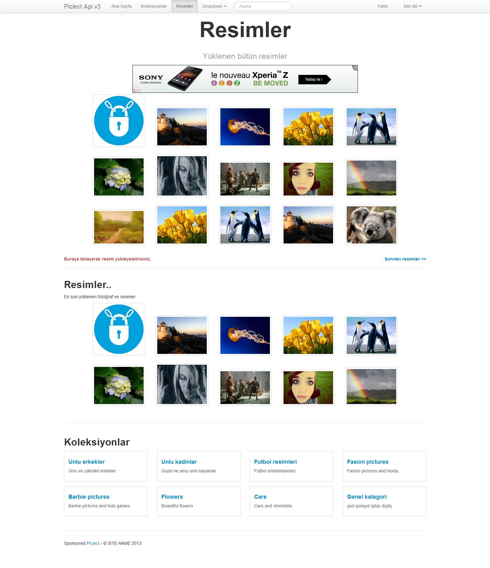 FireShot Screen Capture #012 - 'Resimler - Piclect Api v3' - piclect_com_apiPortalsmarty_photos - kuaza
